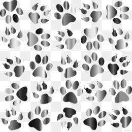 Paw Print Wallpaper Png – Explore the latest collection of paw print wallpapers, backgrounds for powerpoint, pictures and photos in high resolutions that come in different sizes to fit your desktop perfectly and presentation templates.